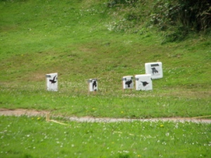Debardchery 2009 Stymphalian Birds target